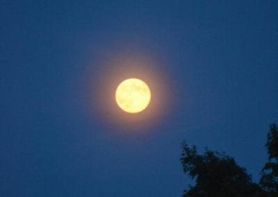 moon_001